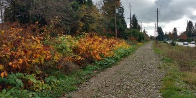 Tranquil urban exploration along former Arbutus railbed/Naomi Reichstein photo