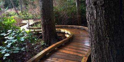 Boardwalk extension through southeastern grove of Camosun Bog/Naomi Reichstein photo