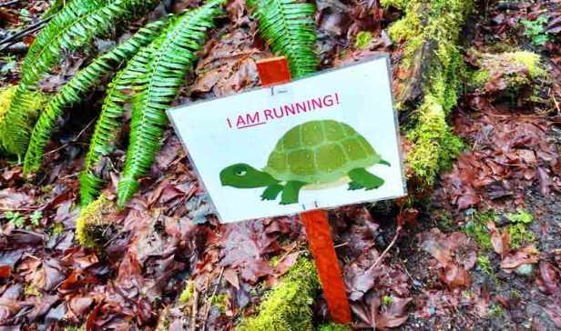 "Motivational ""turtle"" sign on the Chuckanut 50k race/Naomi Reichstein photo"